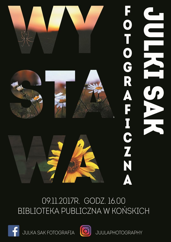 Julka Sak Wystawa (Large)