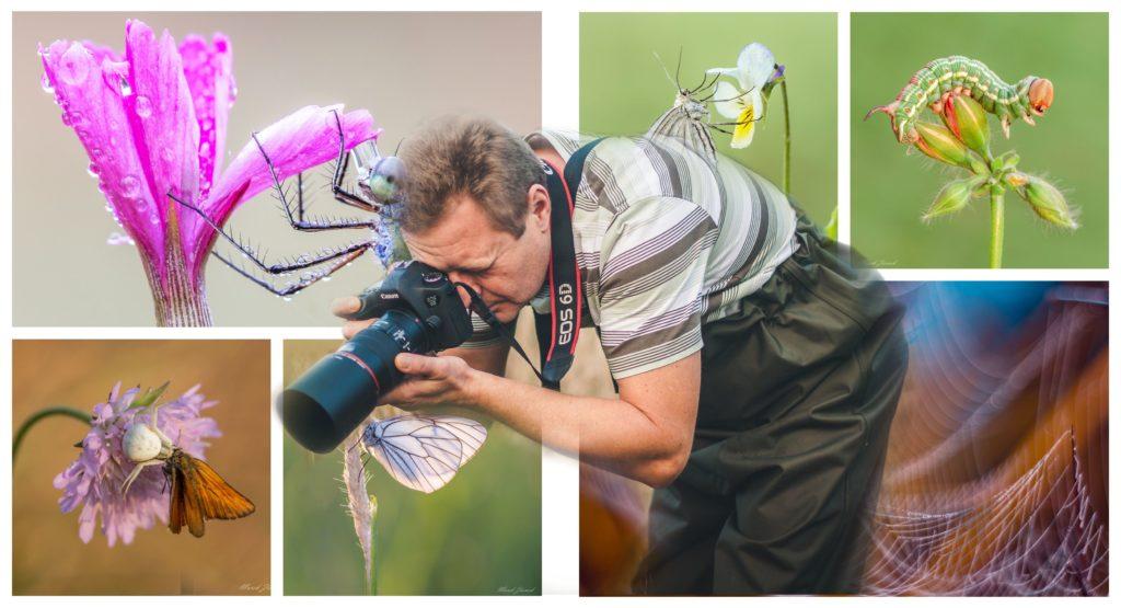 Marek Ziomek collage