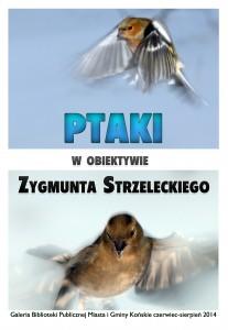 Plakat ptaki1